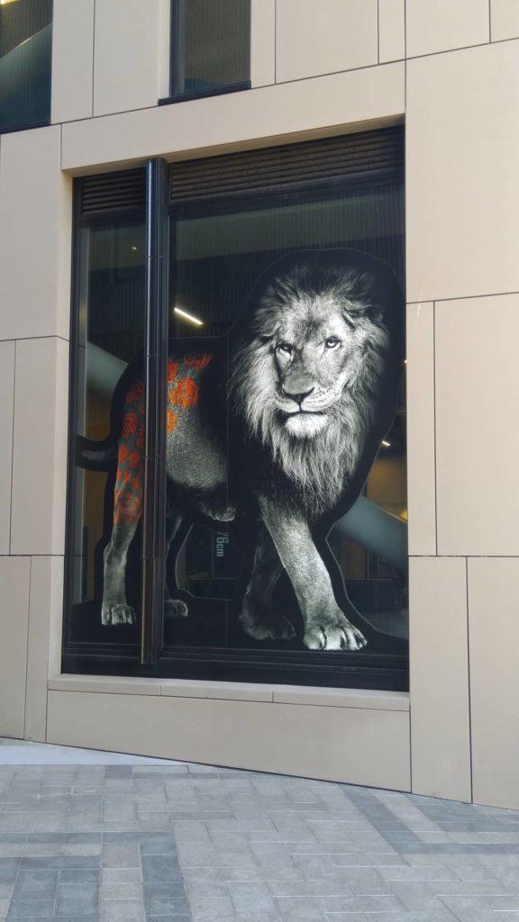 lion-street art-christchurch