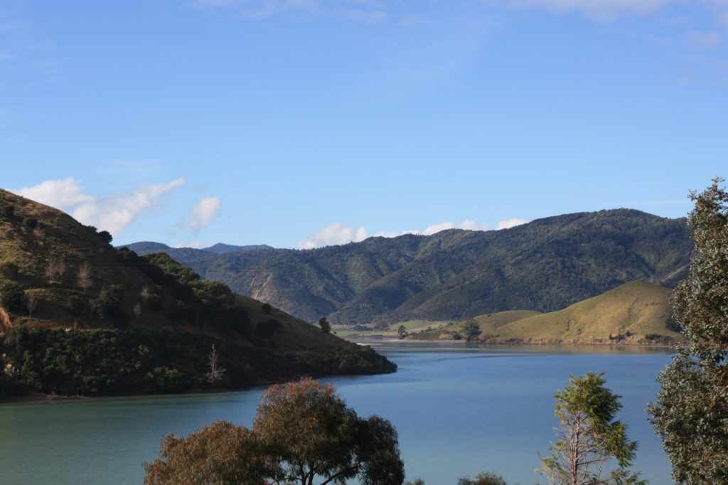 cable-bay-nelson