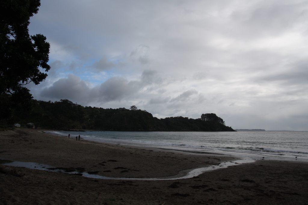 Plam beach Waiheke Island