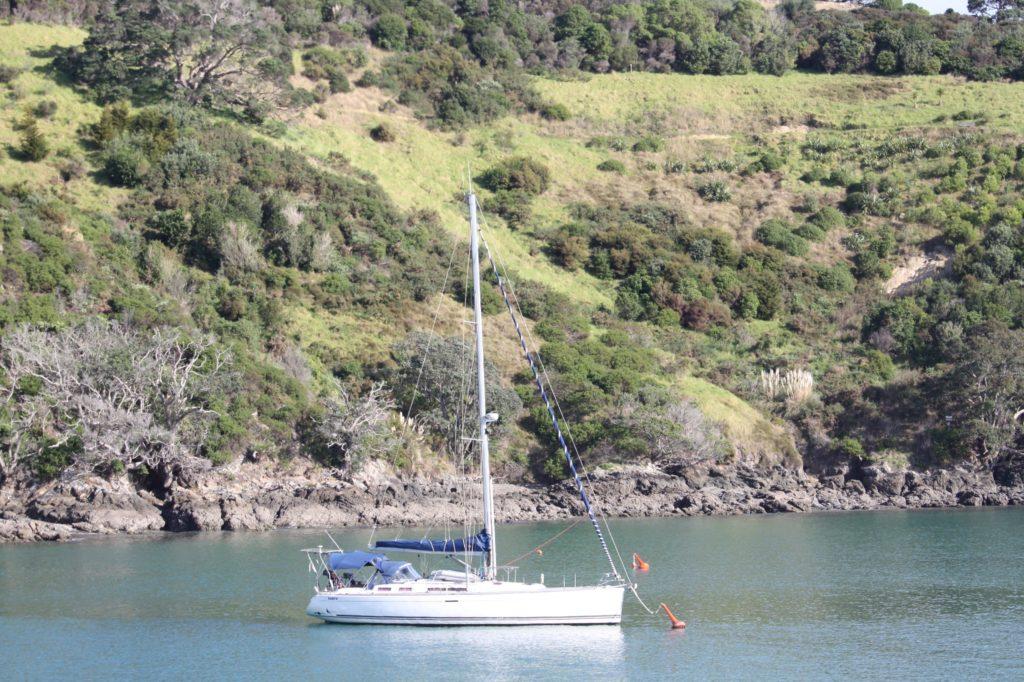 Arrivee ferry Waiheke Island